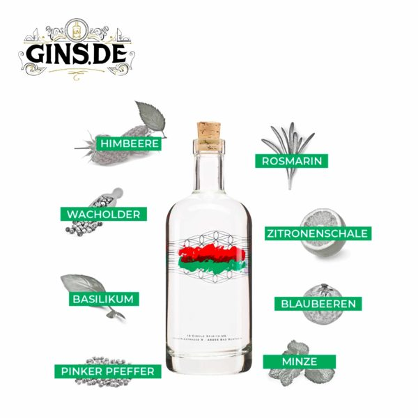 Flasche 19 Spirits Raspmary Nano Batch Dry Gin mit Botanicals